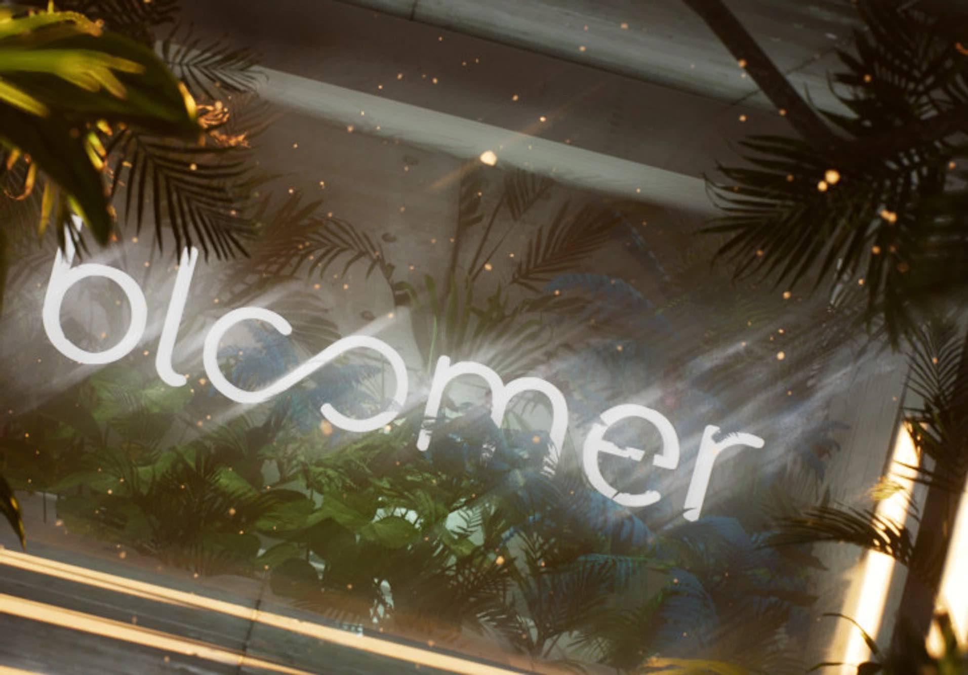 bloomer-sweden.jpg